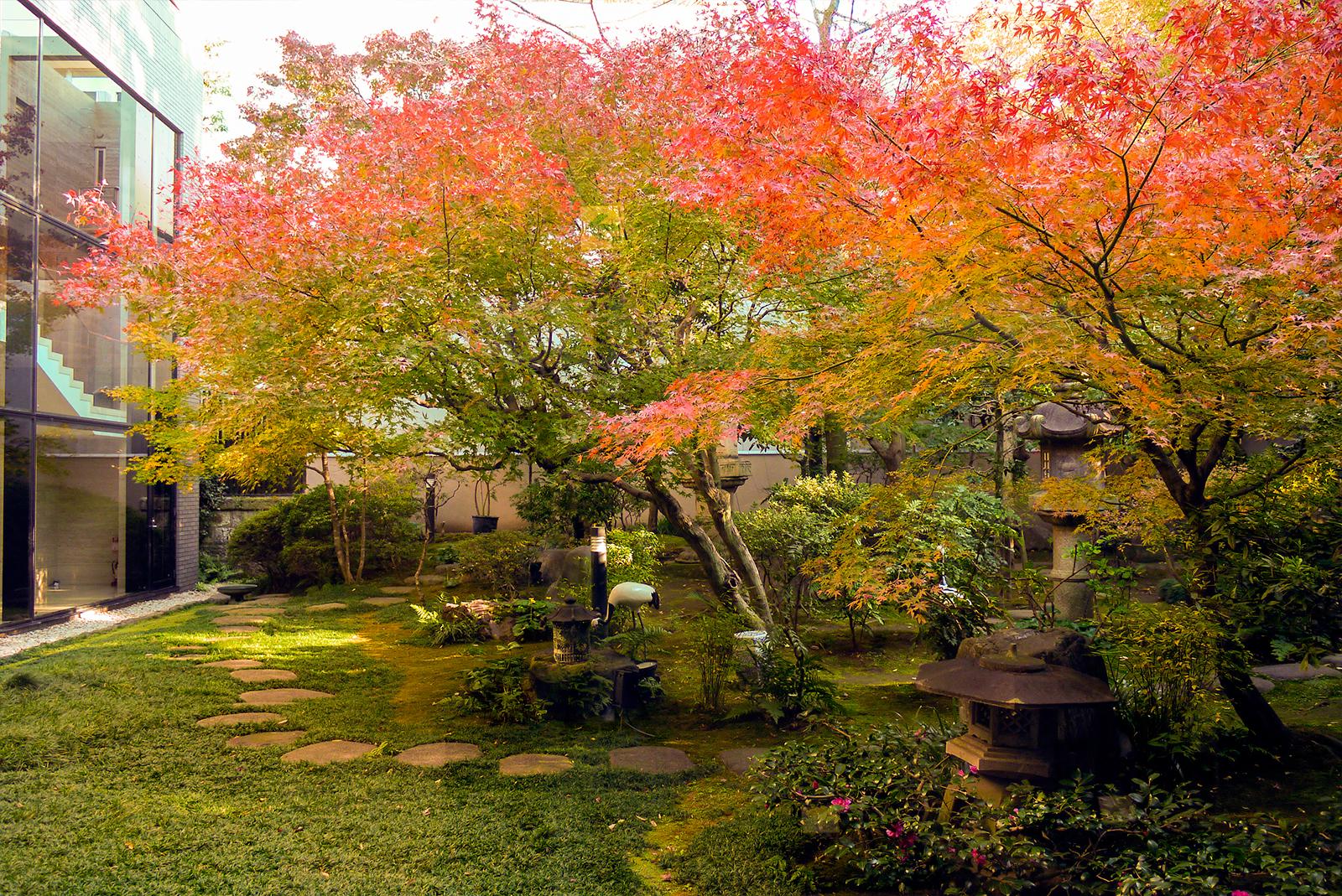 四季を彩る中庭 紅葉